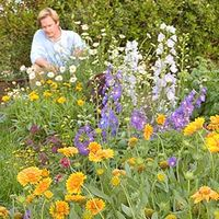 Garden Pallen Smith