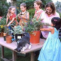 InTheHome PallenSmith
