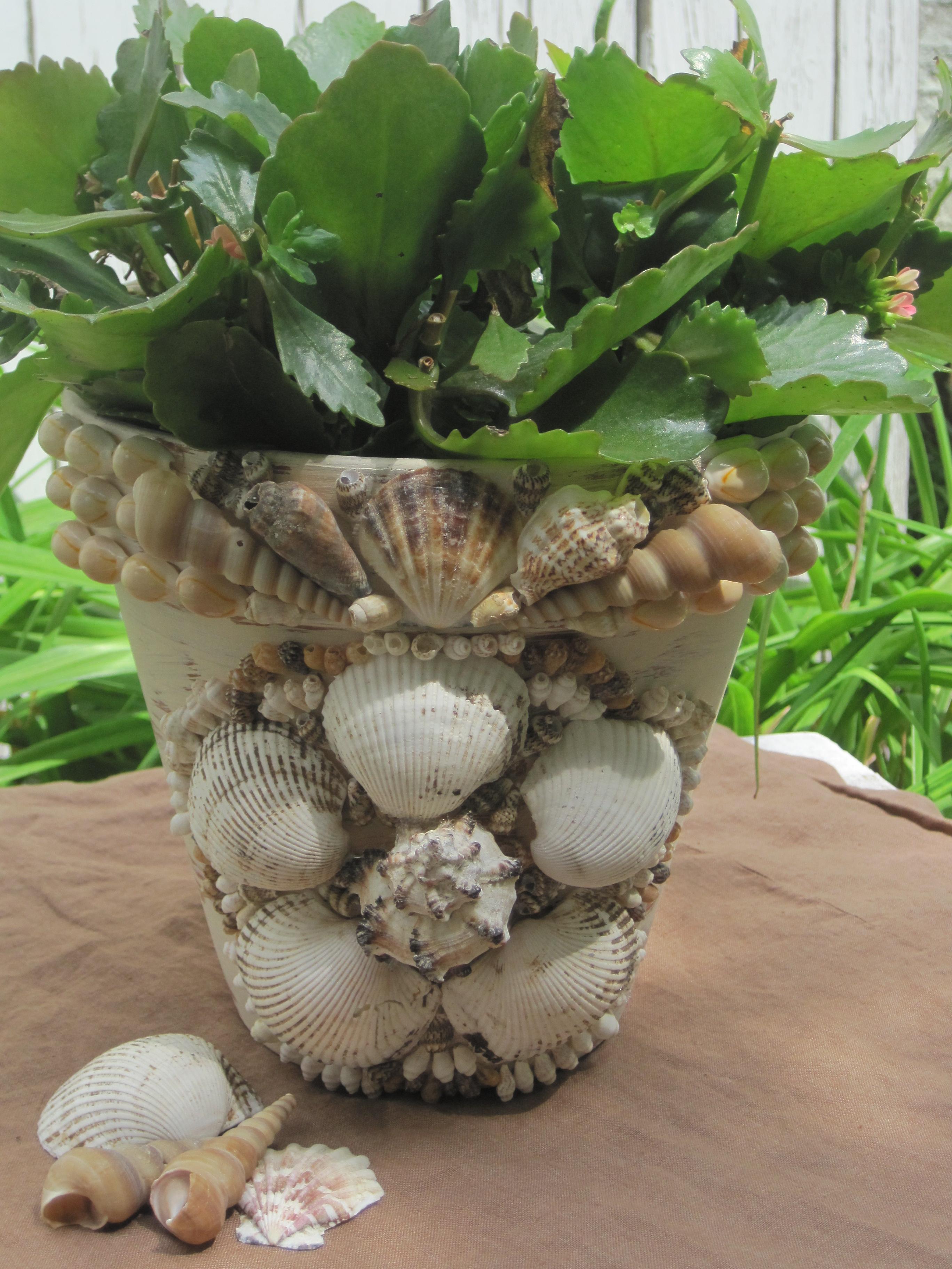 opulent cottage: decorative shell-encrusted flower pot