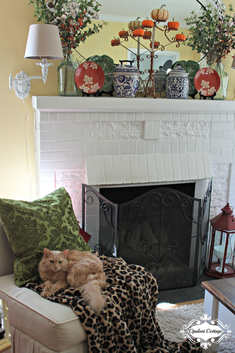 Opulent Cottage Cozy Fall Throw
