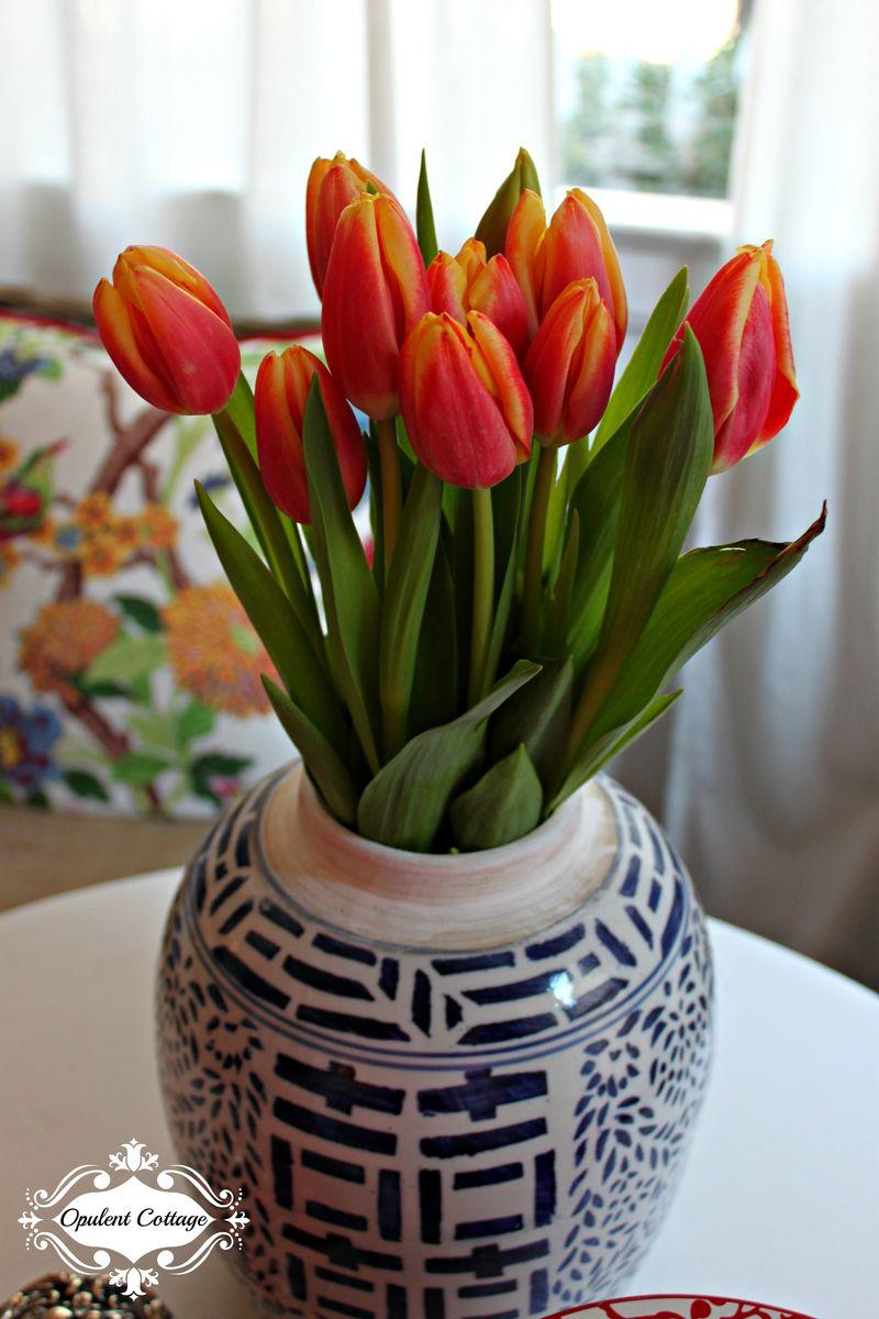 Opulent Cottage Valentine Tulips